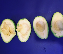 """Avocado """"mayo"""""""